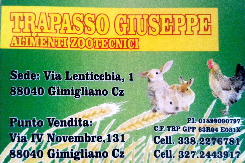http://usdgimigliano.it/wp-content/uploads/2018/10/TrapassoGiuseppe.jpg