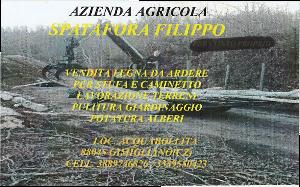 http://usdgimigliano.it/wp-content/uploads/2019/09/Spadafora-filippo.png